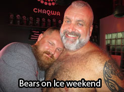 BEARS ON ICE