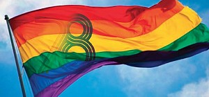 National Queer Organisation elects new board. BDSM Iceland becomes member Organisation.