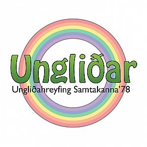 Youth group (Ungliðahópur)